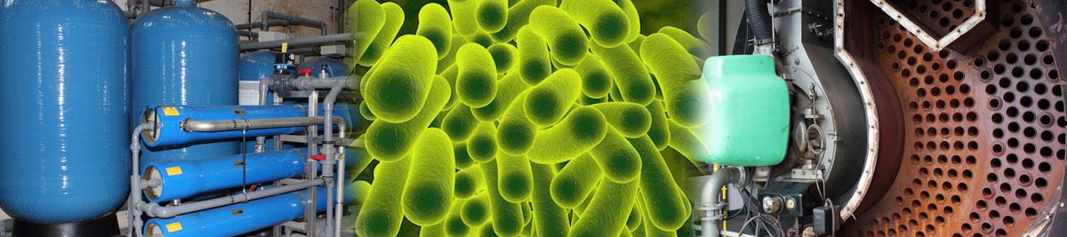 legionella bacteria, steam boiler and reverse osmosis water softener